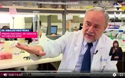 Consumo de litio podría ser clave para frenar el avance del Alzheimer